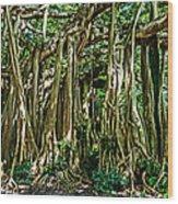 20120915-dsc09882 Wood Print