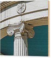 20120915-dsc09908 Wood Print