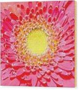 2154a1-003 Wood Print