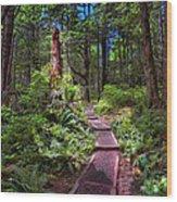 2241 Wood Print