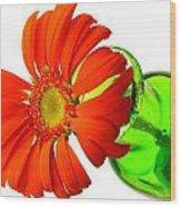 2243c1-001 Wood Print