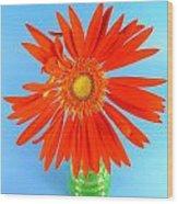2279c2-001 Wood Print