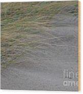 Hurricane Sandy Wood Print
