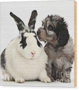 Puppy And Rabbit Wood Print
