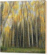 2399 Wood Print