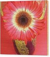 2406c-003 Wood Print