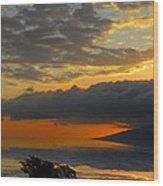 2436 Wood Print