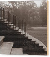28 Up And Down Steps Wood Print