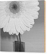 2841-001 Wood Print