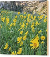 Wasatch Mountains Utah Wood Print