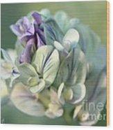 Alfalfa In Shades Of White Wood Print