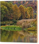 Autumn Big Ditch Lake Wood Print