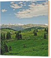 Bridger Mountain View Wood Print