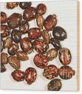 Castor Beans Wood Print