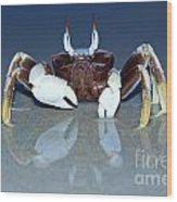 Crab On The Tropical Beach Wood Print