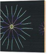 Diatom Algae, Sem Wood Print by Steve Gschmeissner