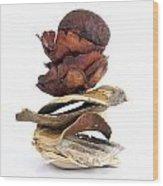 Dried Pieces Of Vegetables.  Wood Print by Bernard Jaubert