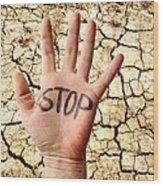 Environmental Protest Wood Print by Victor De Schwanberg