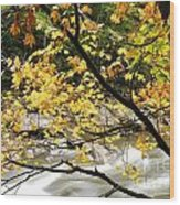 Fall Along Williams River Wood Print by Thomas R Fletcher
