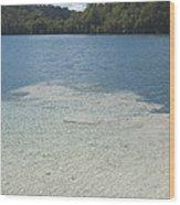 Freshwater Reef Wood Print