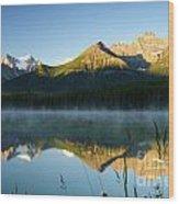 Herbert Lake Wood Print