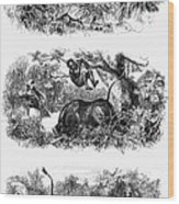 John H. Speke (1827-1864) Wood Print