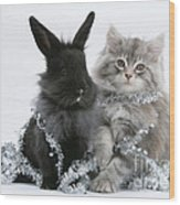 Kitten And Rabbit Getting Into Tinsel Wood Print