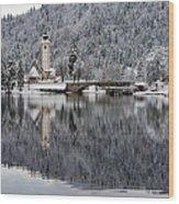 Lake Bohinj In Winter Wood Print