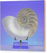 Logarithmic Spiral Wood Print by Photo Researchers, Inc.