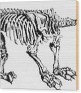Megatherium, Extinct Ground Sloth Wood Print