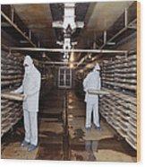 Microbe Fermentation Unit Wood Print