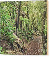 Native Bush Wood Print