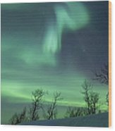 Northern Lights In The Arctic Wood Print