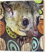 Nosey Wood Print