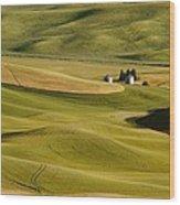 Palouse Fields Whitman County Wood Print