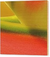 Photograph Of A Lobster Claws Heliconia Wood Print