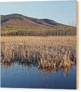 Pondicherry Wildlife Refuge - Jefferson New Hampshire Wood Print