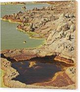 Potassium Salt Deposits, Dallol Wood Print