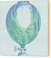 Robert Boyles Air Pumps Wood Print