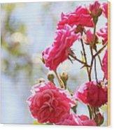 Roses Wood Print by Gal Ashkenazi