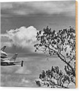 Shuttle Enterprise Wood Print by Roni Chastain