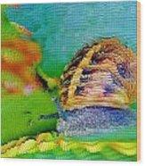 Snail On Aloe Vera Wood Print