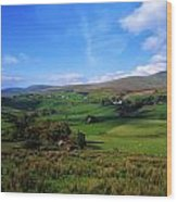 Sperrin Mountains, Co Tyrone, Ireland Wood Print