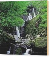 Torc Waterfall, Killarney, Co Kerry Wood Print