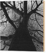 Tree Of Thorns Wood Print