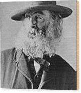 Walt Whitman, American Poet Wood Print