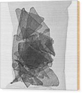 X-ray Of A Bag Of Corn Chips Wood Print