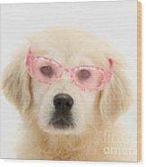 Yellow Labrador Retriever Pup Wood Print