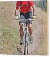Mountain Bike Wood Print