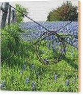Ennis Tx Bluebonnet Trails Wood Print